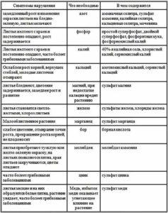 Особенности удобрения и подкормки