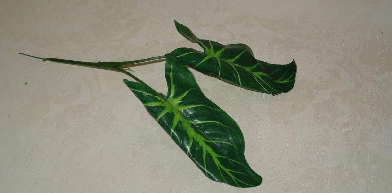 Размножение листиками