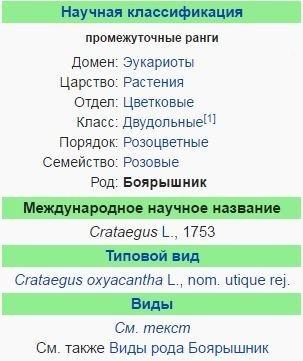 boyaryshnik