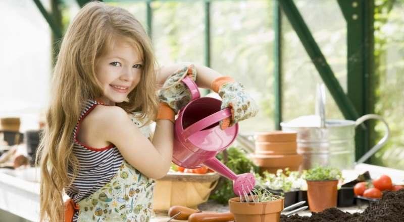 Особенности полива и удобрения