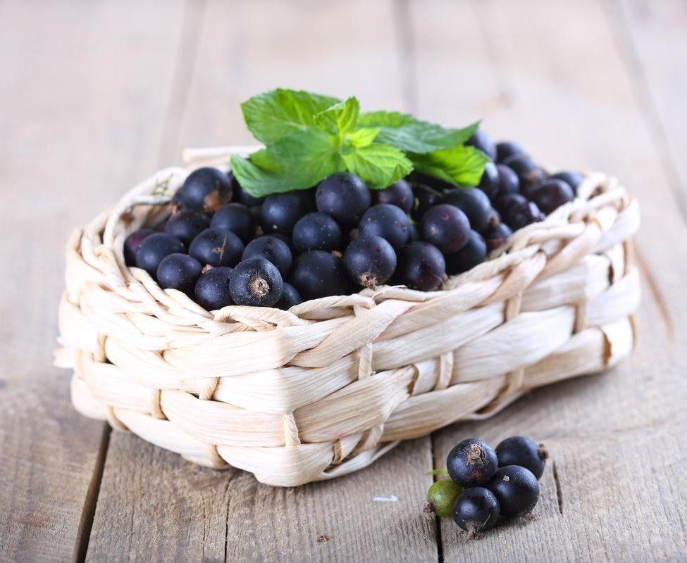 Спелые ягоды чёрной смородины